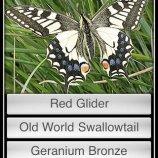Скриншот Butterflies!