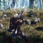 Скриншот The Witcher 3: Wild Hunt – Изображение 93