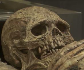 В рекламном ролике The Order 1886 откопали двухметровый скелет