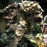 Скриншот Monster Hunter 4 – Изображение 13