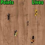 Скриншот Ant Smasher – Изображение 4