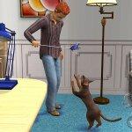 Скриншот The Sims 2: Pets – Изображение 8