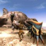 Скриншот Monster Hunter Tri – Изображение 35