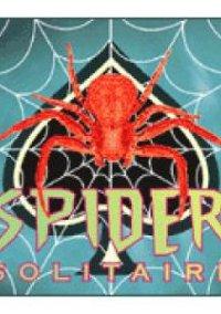 Обложка Spider Solitaire