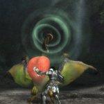 Скриншот Monster Hunter Tri – Изображение 42