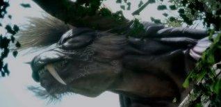 Final Fantasy Type-0 HD. Финальный японский трейлер