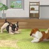 Скриншот Nintendogs + Cats – Изображение 8
