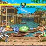 Скриншот Fighter's History