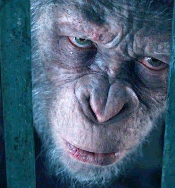 Первые отзывы на «Планета обезьян: Война» (2017)