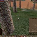 Скриншот Rubies of Eventide – Изображение 132