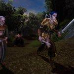Скриншот Dungeons & Dragons Online – Изображение 31