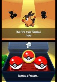Обложка Pokémon Black Version/White Version