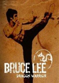 Bruce Lee Dragon Warrior – фото обложки игры