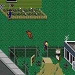 Скриншот Paperboy 2 – Изображение 5