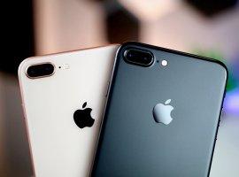 СМИ: Apple готовит два «дешевых» смартфона. Вторым станет iPhone 9 Plus