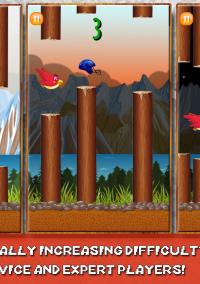 Chirpy - Helmet Head Bird – фото обложки игры