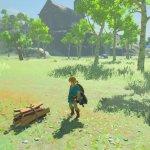 Скриншот The Legend of Zelda: Breath of the Wild – Изображение 25