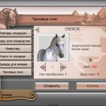 Скриншот My Riding Stables: A Life for the Horses – Изображение 1
