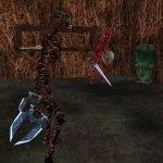 Скриншот EverQuest: Secrets of Faydwer – Изображение 4