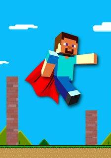 Flying Steve