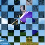 Скриншот Animated Puzzles – Изображение 2