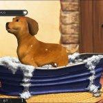 Скриншот My Best Friends. Cats & Dogs – Изображение 3