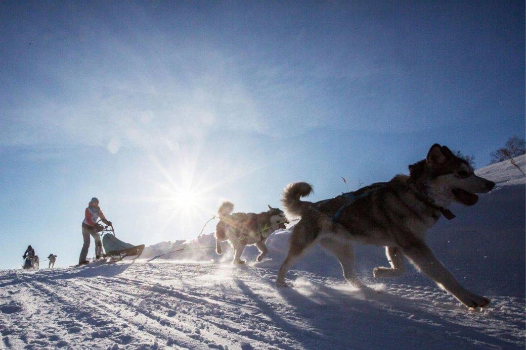 9 видов Сибири глазами иностранцев  | Канобу - Изображение 793