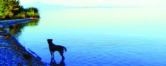 10 главных фильмов ноября | Канобу - Изображение 2