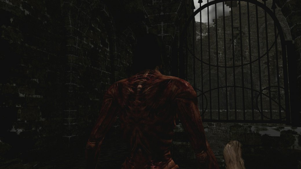 Обзор Dark Souls: Remastered на Nintendo Switch | Канобу - Изображение 3745