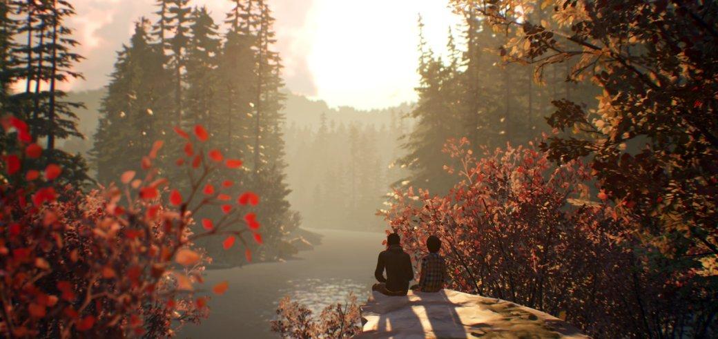 Первый геймплей Life is Strange 2 — что мы узнали об игре? Сюжет, главные герои, музыка | Канобу - Изображение 10485